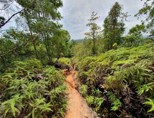 汶莱的3条最佳远足小径