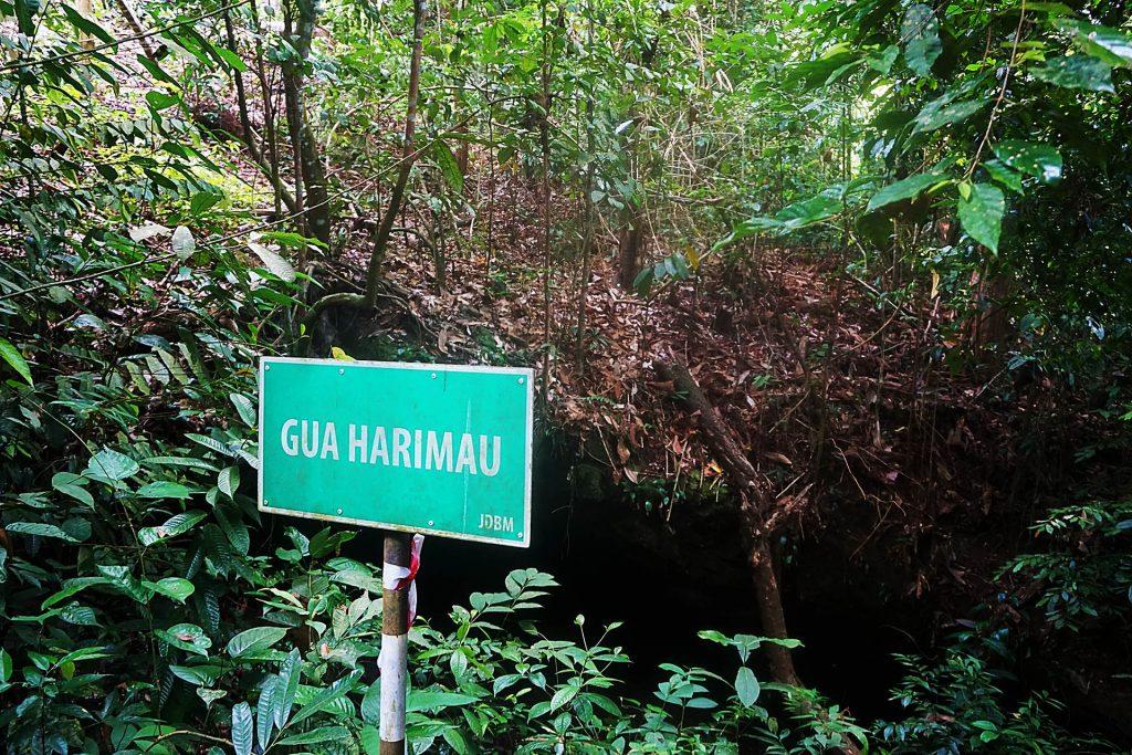探索文莱未发现的洞穴