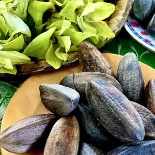 Meritus may be literally a tough nut to crack, but many Bruneians do not mind going through the trouble of extracting the nut. Enjoyed as a snack, the nut can be eaten on its own or dipped in sugar. #discoverbrunei #travelgram #instatravel #travelasia #travelinspiration #travelphotography #travel #wanderlust #destinationearth #seetheworld #brunei